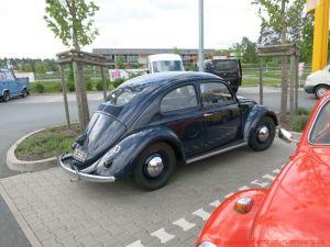 Bug_Hausen-10