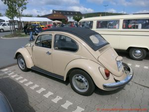 Bug_Hausen-7