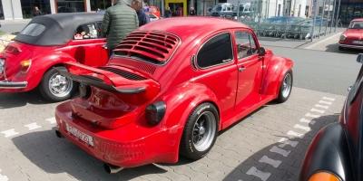 Bug_Hausen-14