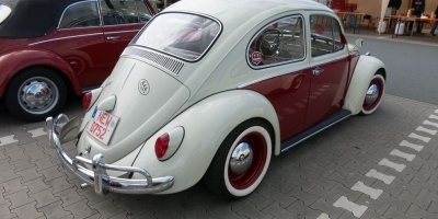 Bug_Hausen-33
